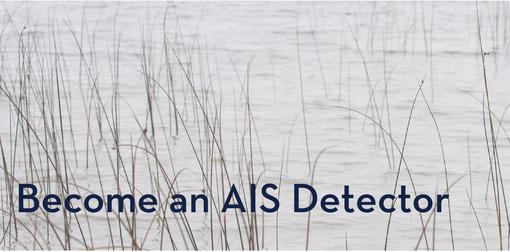 AIS detector