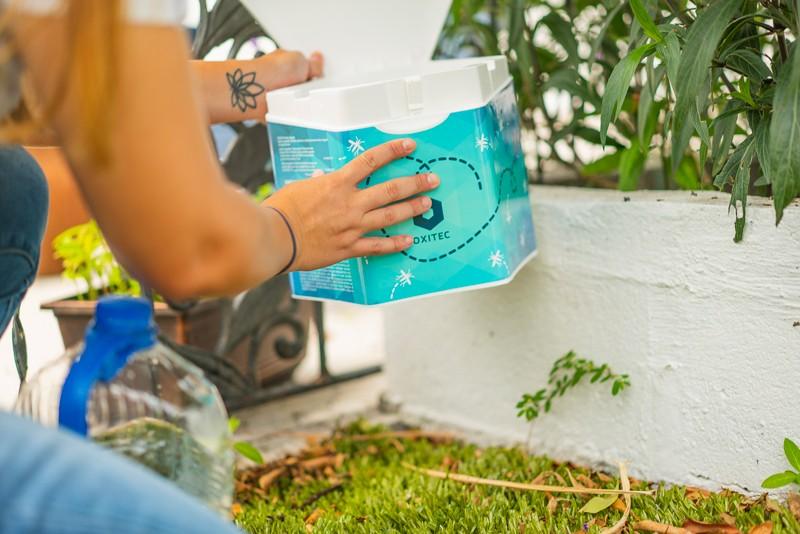 Oxitec 2021 mosquito box