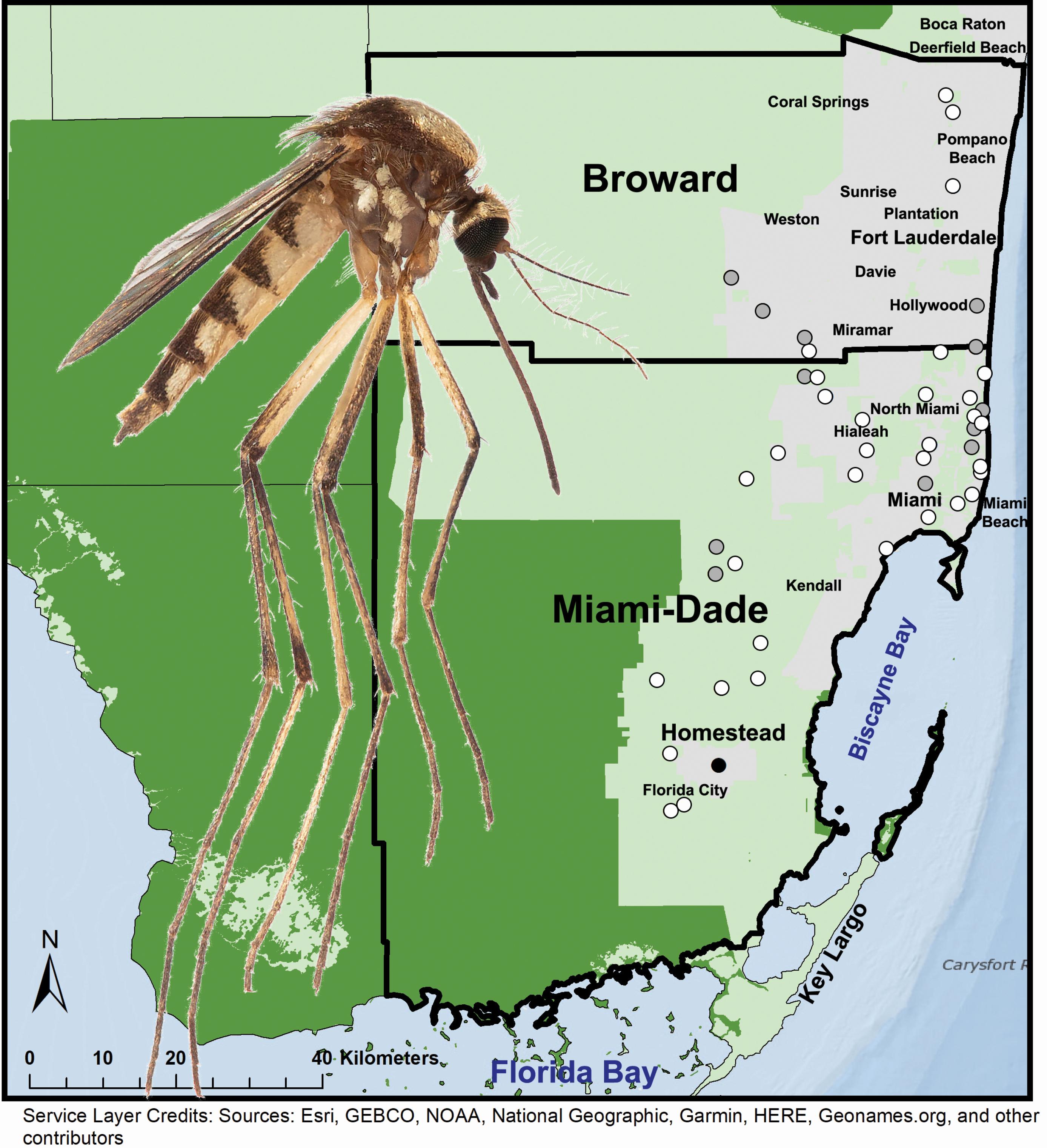 Aedes scapularis- Reeves et al., (2020) map
