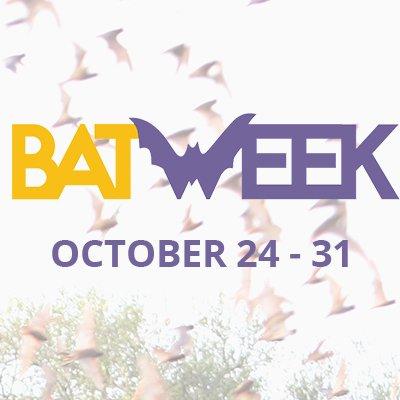 BatWeek.org